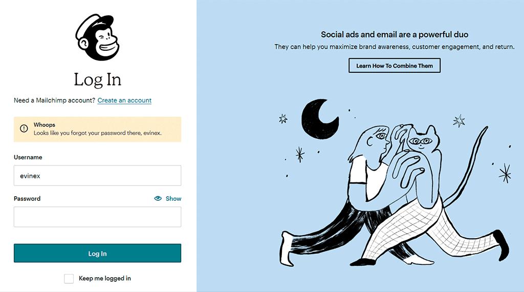 Mailchimp login form showing an error when not providing your password.