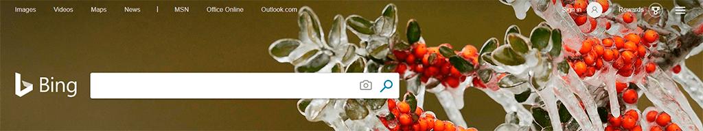Search Appearance - Bing