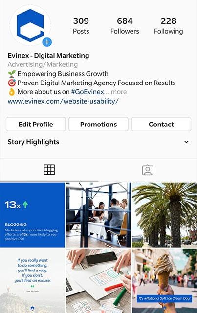 evinex' instagram profile