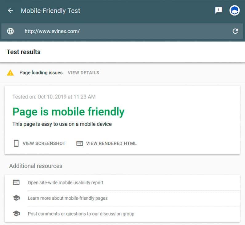 Google Mobile Friendly Test Screenshot