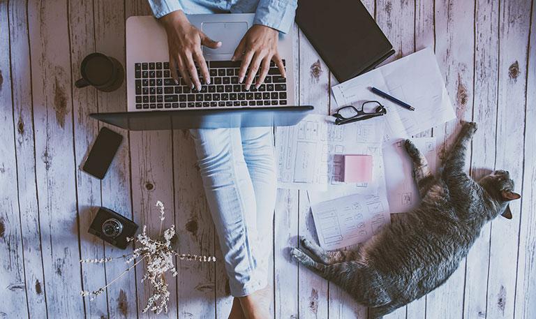 woman using laptop cat